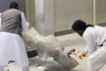 Anche le sculture muoiono in video